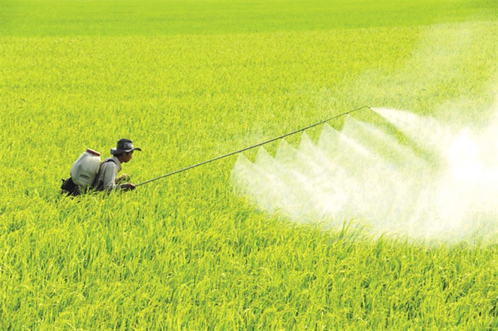 Cần khơi thông vốn tín dụng 100 nghìn tỷ đồng để hướng tới một nền sản xuất nông nghiệp tiên tiến.