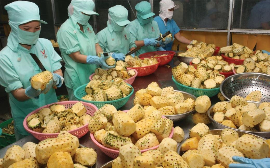 Thuế suất 0% tạo cơ hội trong thách thức cho nông sản Việt. (Ảnh minh họa)