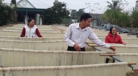Nhiều hộ dân xã Thăng Long nhờ nguồn vốn vay NHCSXH đã đầu tư dây chuyền làm miến vươn lên thoát nghèo bền vững.