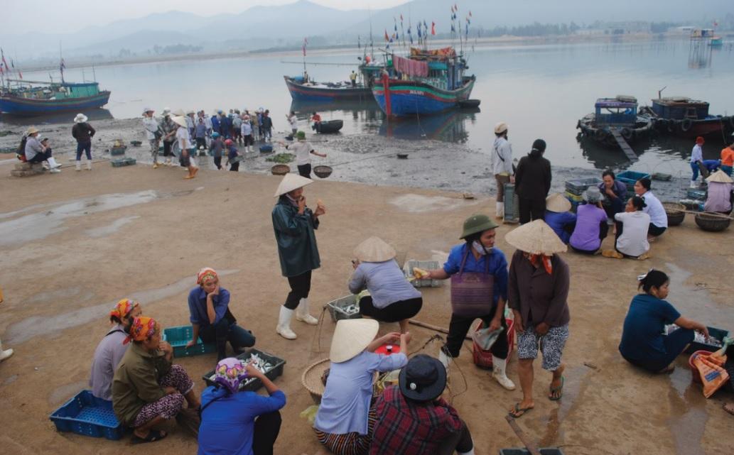 Cảng cá Cửa Tùng luôn tấp nập thuyền cá.