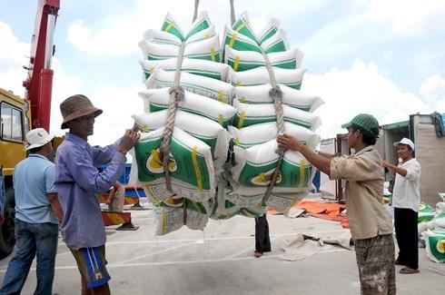 Xuất khẩu gạo có nhiều tín hiệu vui trong những tháng đầu năm (Ảnh: KT)