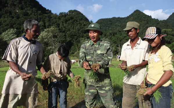 Bộ đội hướng dẫn đồng bào trồng lúa nước.