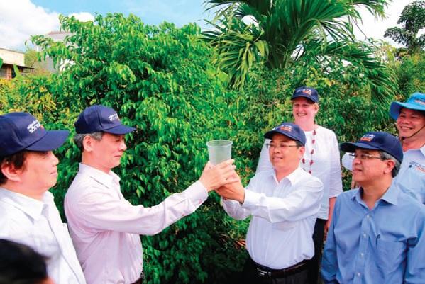 Các nhà khoa học trong nước và quốc tế thả muỗi mang vi khuẩn Wolbachia vào tự nhiên.