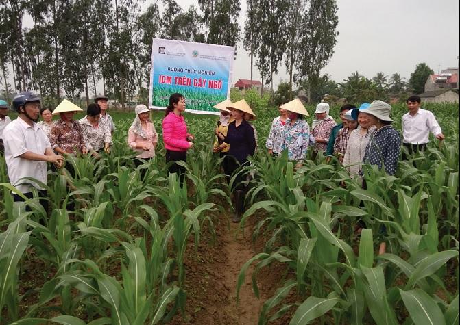 Tăng cường ứng dụng KHCN để nâng cao năng suất, chất lượng cây trồng.