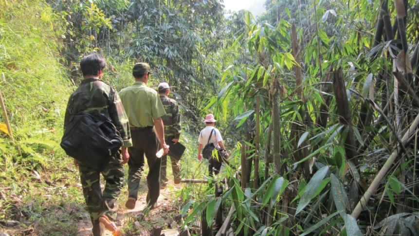 Ban quản lý Khu bảo tồn thiên nhiên huyện Mường Nhé cùng các lực lượng chuyên ngành thường xuyên thực hiện công tác tuần tra bảo vệ rừng. (Ảnh MH)