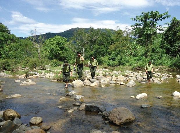 Kiểm lâm các địa phương phối hợp tuần tra bảo vệ rừng.