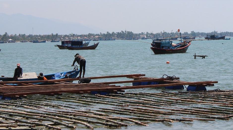 Nuôi thủy sản trong các lồng bè truyền thống ngư dân chịu nhiều rủi ro.