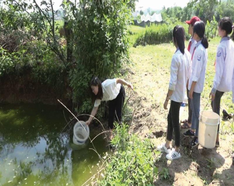 Nhiều cô giáo và học sinh bắt buộc phải lấy nước ao về sinh hoạt hằng ngày.