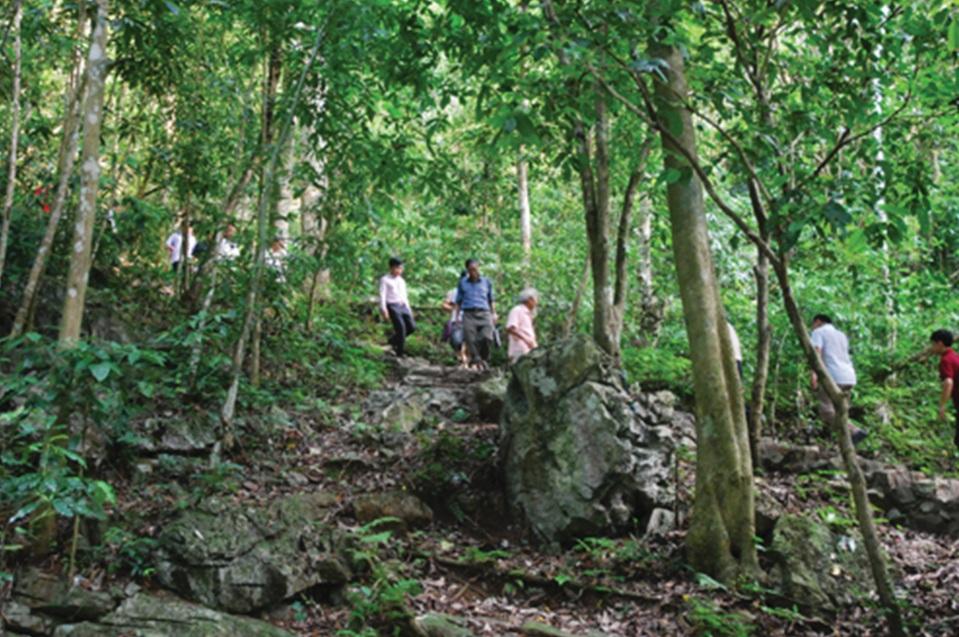 Người dân tích cực tham gia bảo vệ và phát triển rừng.