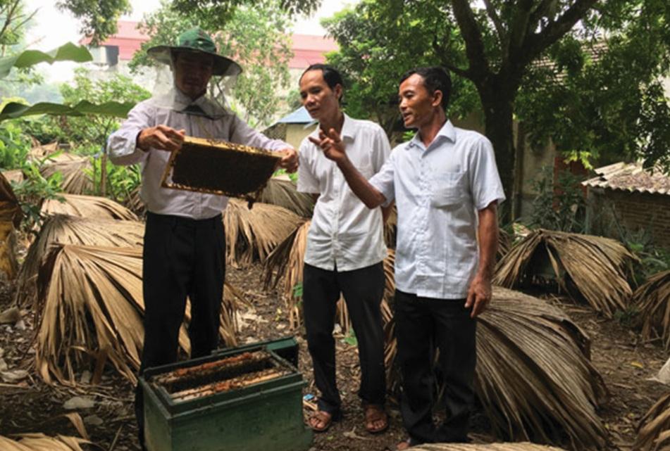 Bệnh binh Dương Văn Toan (người cầm giá mật) giới thiệu về mô hình nuôi ong lấy mật của gia đình.