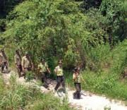 Để rừng giáp ranh không bị phá, cần phân định ranh giới rõ ràng và tăng cường công tác tuần tra, kiểm soát. (ảnh minh họa)