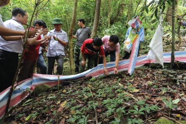Đoàn Công tác thăm vườn sâm giống 1 năm tuổi trên núi Ngọc Linh.