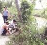 Sông Nhùng