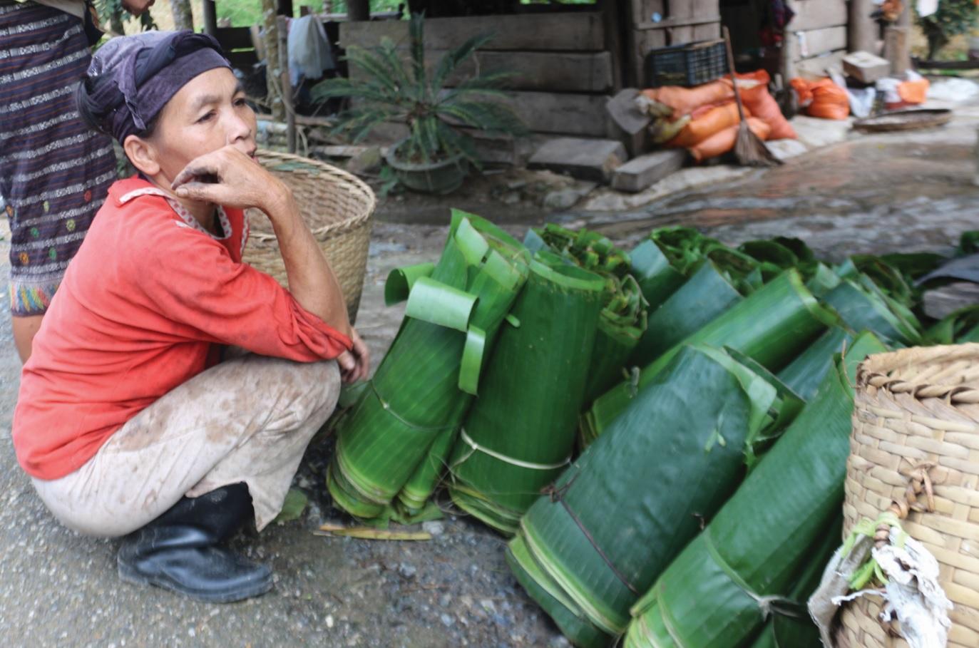Không có đất sản xuất, người dân phải vào rừng hái lá về bán.