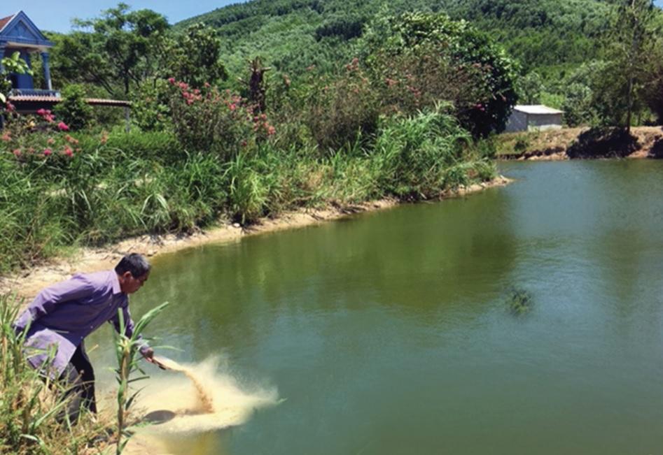 Mô hình nuôi cá cho thu nhập cao của gia đình anh Hồ Thương.