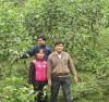 Phát triển kinh tế đồi, rừng