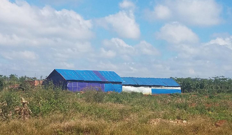 Lò đốt than trái phép mọc giữa khu dân cư tại thôn Thuận Nam, xã Thuận Hạnh, huyện Đăk Song.
