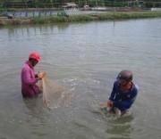 Ven biển U Minh