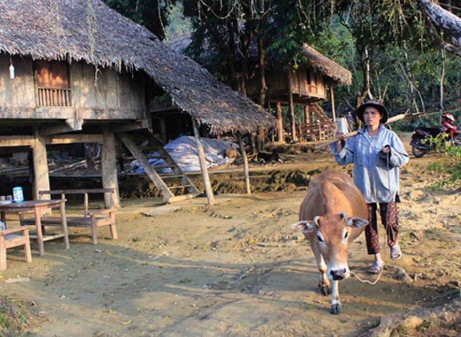 Bản Hiêu, xã Cổ Lũng, huyện Bá Thước là một trong 214 bản của tỉnh Thanh Hóa được hỗ trợ phát triển cộng đồng theo Quyết định 24/QĐ-TTg.