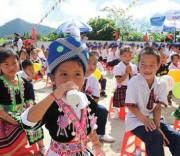 Chương trình sữa học đường