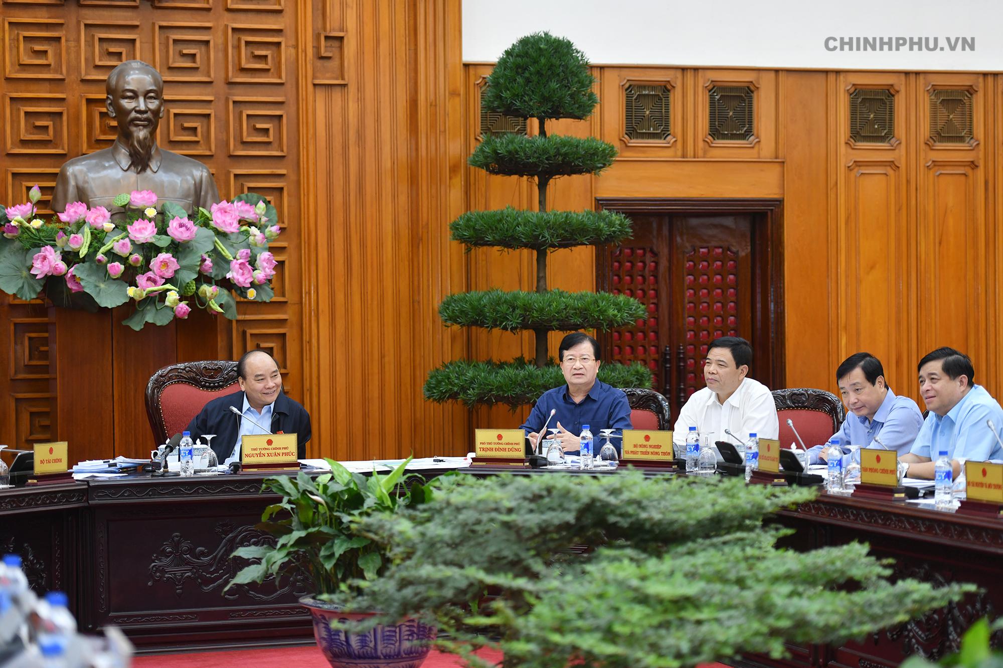 Phó Thủ tướng Trịnh Đình Dũng phát biểu tại cuộc họp. - Ảnh: VGP/Quang Hiếu
