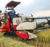 Sản phẩm nông nghiệp xuất khẩu