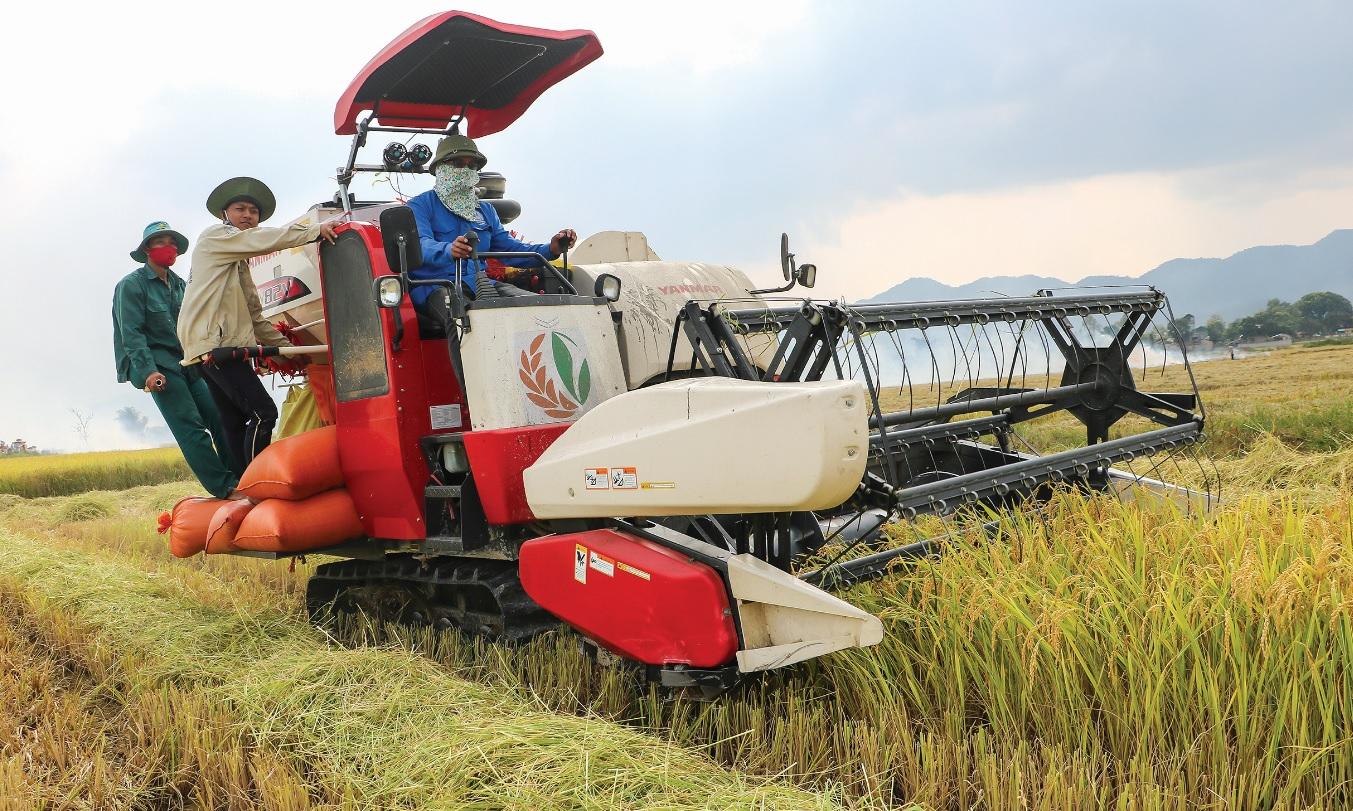 Đưa cơ giới hóa vào sản xuất nông nghiệp trên cánh đồng mẫu lớn của HTX dịch vụ tổng hợp Thanh Yên, tỉnh Điện Biên.