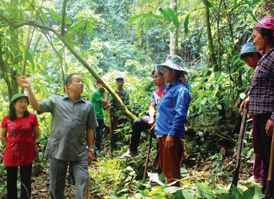 Cộng đồng dân cư xã Sín Thầu, huyện Mường Nhé tích cực tham gia bảo vệ rừng, phát triển kinh tế.