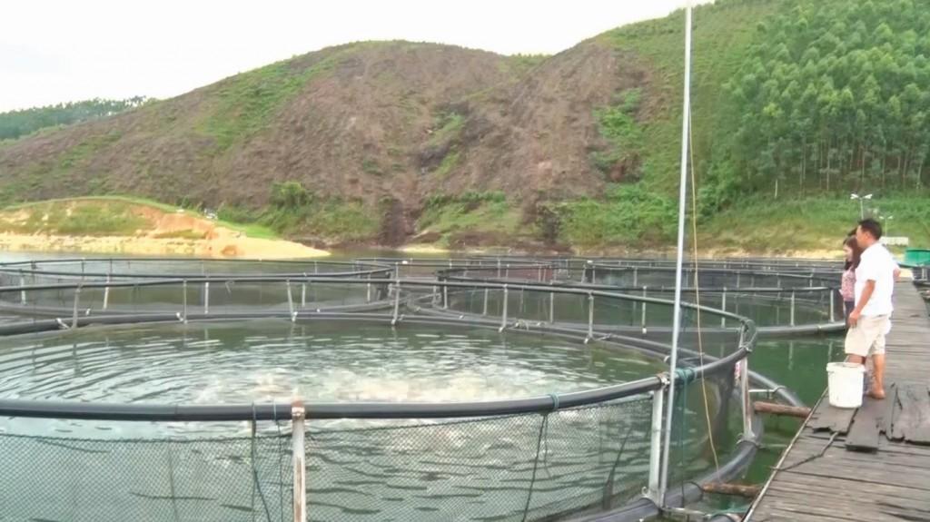 Phát triển thủy sản ở Yên Bái