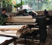 Xã Tân Hương