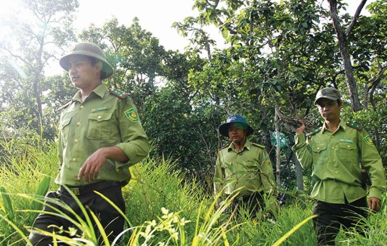 Kiểm lâm VQG Yok Đôn tuần tra bảo vệ rừng.