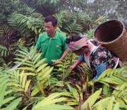 Ban Dân tộc Sơn La
