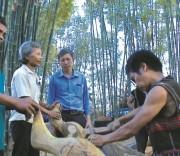 Nghệ thuật điêu khắc gỗ