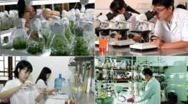 Doanh nghiệp khoa học và công nghệ