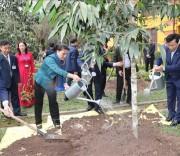 Chủ tịch Quốc hội trồng cây lưu niệm
