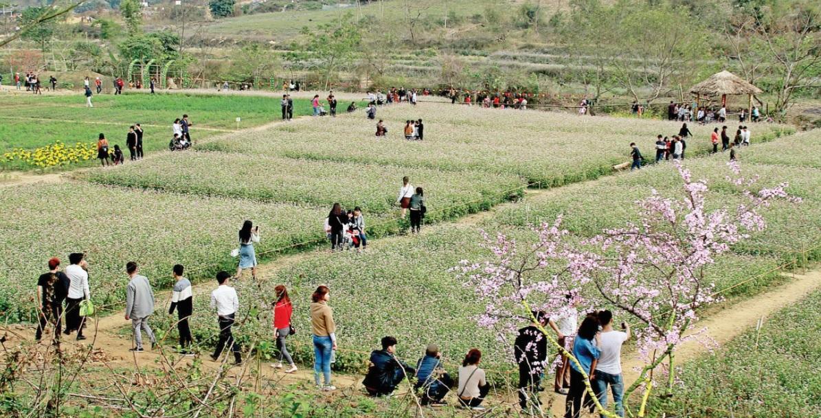 Mùa xuân, Đồng Luông rộn ràng bước chân du khách nhưng vắng tiếng khèn Mông - Ảnh Ngô Đức Mích
