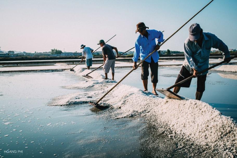 Diêm dân Bà Rịa- Vũng Tàu phấn khởi vì muối được giá, được mùa.