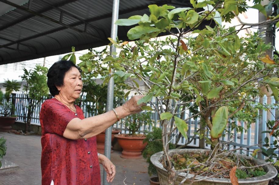 Đại tá Minh Lý chăm sóc cây cảnh tại nhà.