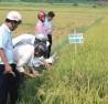 Làm nông nghiệp sạch