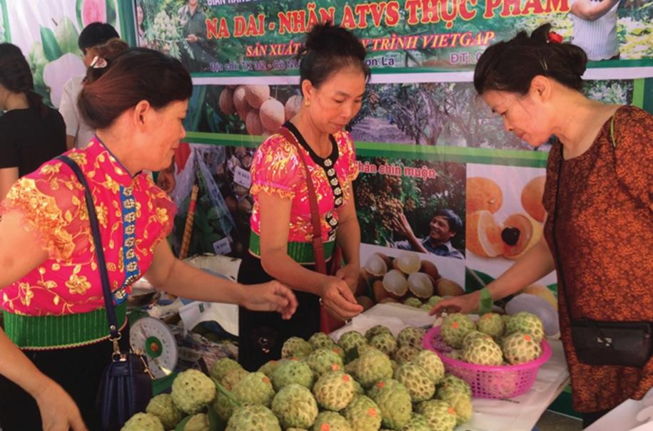 Nông sản Sơn La được nhiều người tiêu dùng ưa thích.