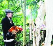 Lễ hội Tết rừng