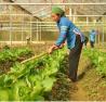 Ứng dụng công nghệ cao vào nông nghiệp