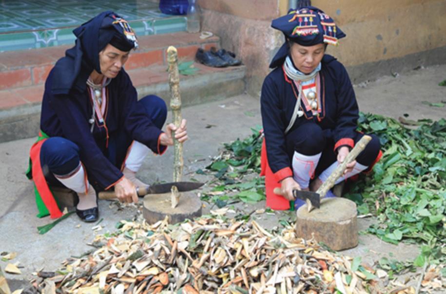 Đồng bào dân tộc Dao đang chế biến thuốc nam gia truyền. Ảnh: tư liệu