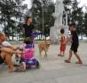 Chó nuôi thả rông, không rọ mõm đang tiềm ẩn nguy cơ rất cao đến tính mạng con người. (Ảnh chụp tại khu thăm quan du lịch TP. Sầm Sơn -Thanh Hóa)
