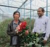 đồng bào Cơ-ho làm nông nghiệp công nghệ cao