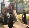 Tình trạng phá rừng ở Kon Tum