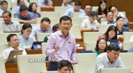 Đại biểu Quốc hội trong phiên thảo luận tại Hội trường về Luật phòng, chông tác hại rượu, bia.