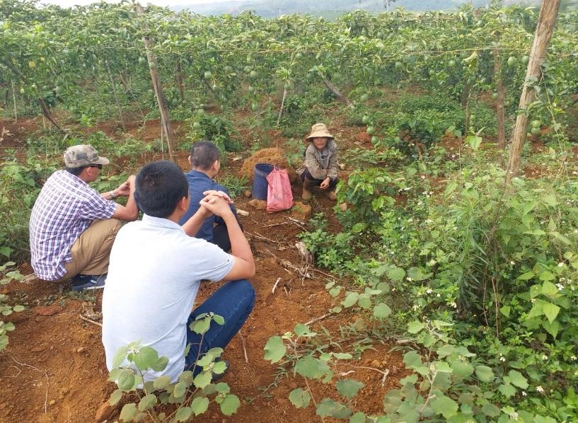 Bà Chinh bỏ ra 250 triệu đồng mua gần 1ha đất để trồng chanh leo theo diện hợp đồng viết tay. (ảnh chụp ngày 17/4/2019)
