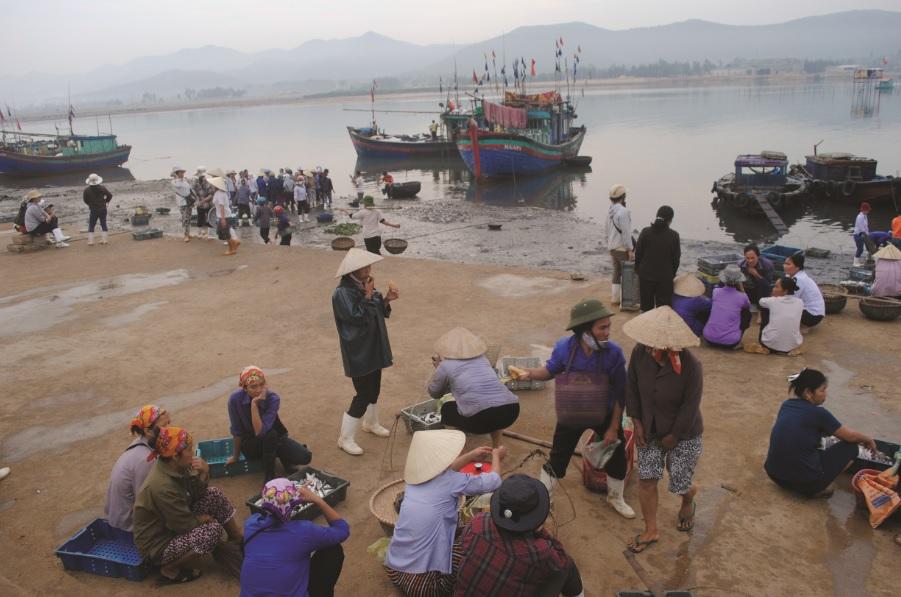 Tấp nập cảng cá Cửa Việt.