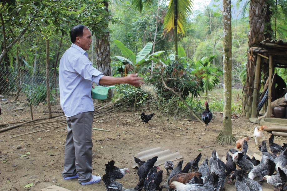 Chính sách hỗ trợ sản xuất tạo động lực giúp người dân phát triển kinh tế, vươn lên thoát nghèo.(Trong ảnh: Tranh thủ nguồn vốn hỗ trợ gia đình ông Phạm Bá Lực, trú tại xã Phú Nghiêm đầu tư phát triển kinh tế theo mô hình trang trại ).